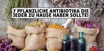 7 pflanzliche Antibiotika die jeder zu Hause haben sollte!