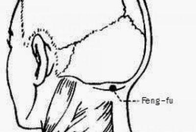 Feng Fu